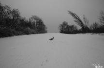 Kręcenie w śniegu