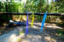 Zgrupka Luboń zabezpiecza Forest Run