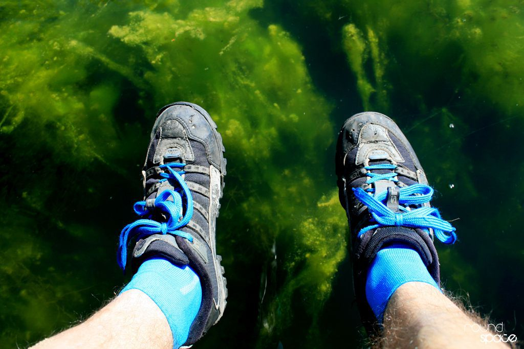 Zielona głębia