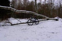 Powitanie zimy
