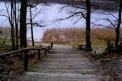 Wielkopolski Park Narodowy - Jezioro Góreckie